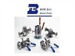 BFE HL 300 Hand Wheel Globe Valve Image